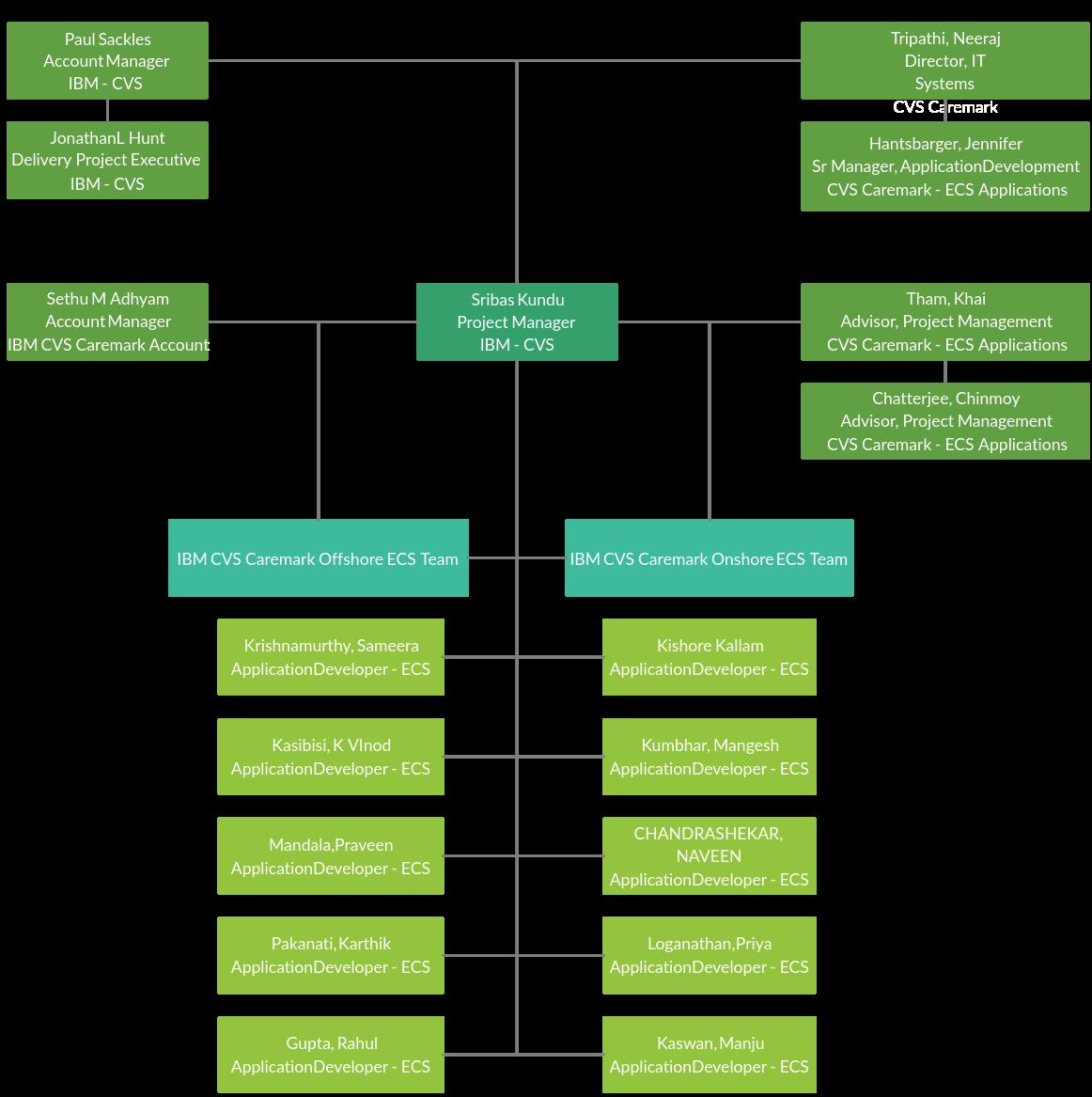 IBM CVS Organization Chart